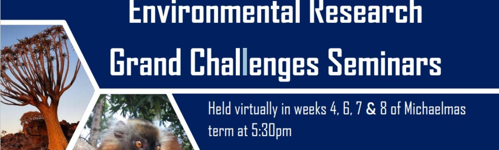grand challenges website banner