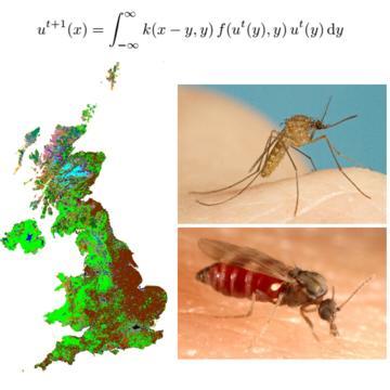 white steven research image