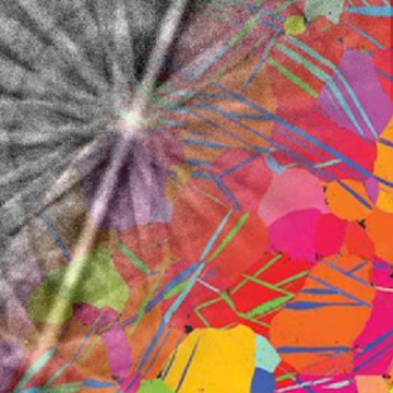 wilkinson angus research image jpg
