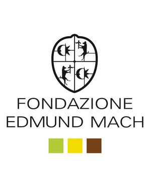 fem logo