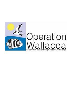 opwall logo v2